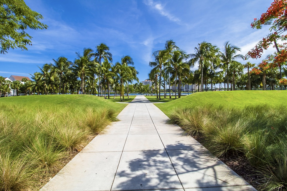 A Look into South Florida's Real Estate Market